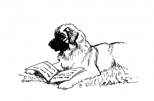 """Leonberger Reading"" whimsical Leonberger dog art by M. Nicole van Dam"